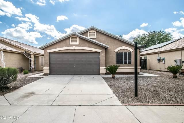839 E Saragosa Street, Chandler, AZ 85225 (MLS #6309401) :: Yost Realty Group at RE/MAX Casa Grande