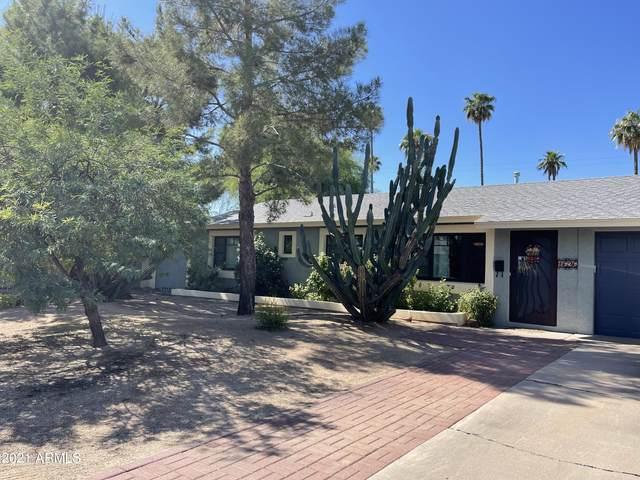 1626 S Ventura Drive, Tempe, AZ 85281 (MLS #6309417) :: Zolin Group
