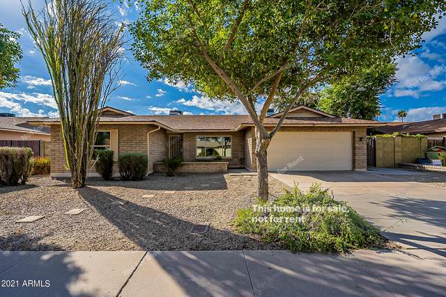 5229 W Beryl Avenue, Glendale, AZ 85302 (MLS #6309426) :: Yost Realty Group at RE/MAX Casa Grande