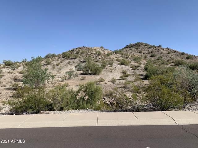11389 S San Roberto Drive, Goodyear, AZ 85338 (MLS #6309438) :: D & R Realty LLC
