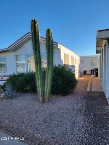 8865 E Baseline Road #1517, Mesa, AZ 85209 (MLS #6309474) :: Arizona Home Group