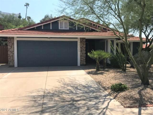 14209 N 22ND Street, Phoenix, AZ 85022 (MLS #6309496) :: The Garcia Group