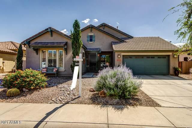 1077 E Elgin Street, Gilbert, AZ 85295 (MLS #6309508) :: Conway Real Estate