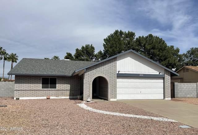 2956 W Sandra Terrace, Phoenix, AZ 85053 (MLS #6309514) :: Elite Home Advisors