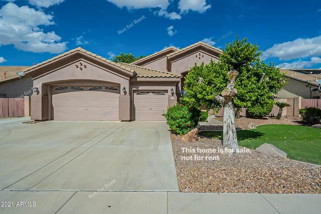 8044 W Louise Drive, Peoria, AZ 85383 (MLS #6309526) :: West USA Realty