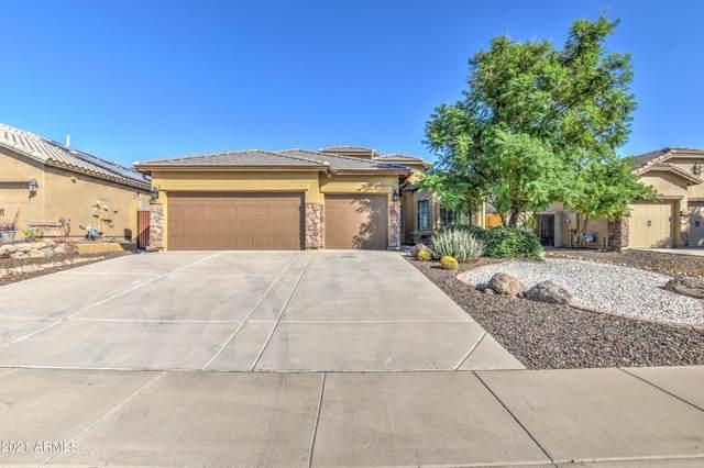 867 S Phelps Drive, Apache Junction, AZ 85120 (MLS #6309536) :: Dave Fernandez Team | HomeSmart