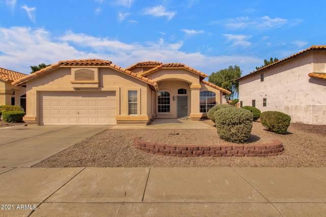 15006 S 46TH Place, Phoenix, AZ 85044 (MLS #6309548) :: Yost Realty Group at RE/MAX Casa Grande