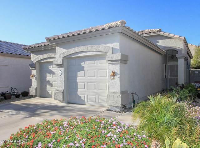 4910 W Behrend Drive, Glendale, AZ 85308 (MLS #6309607) :: Arizona Home Group