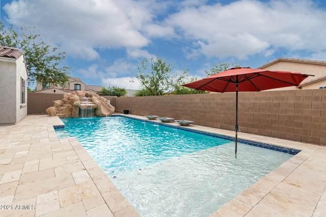 9135 W Buckhorn Trail, Peoria, AZ 85383 (MLS #6309625) :: Keller Williams Realty Phoenix