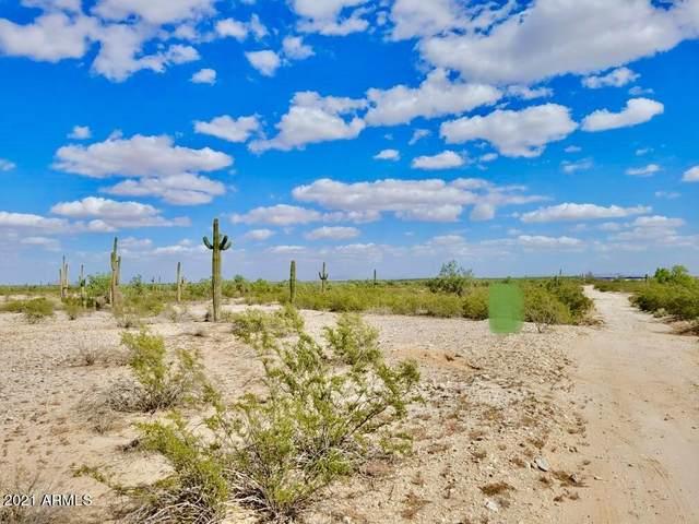 XXX Xxxx, Maricopa, AZ 85138 (MLS #6309634) :: West USA Realty