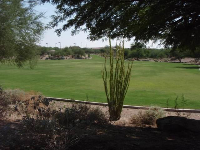 3055 N Red Mountain #154, Mesa, AZ 85207 (MLS #6309639) :: Fred Delgado Real Estate Group