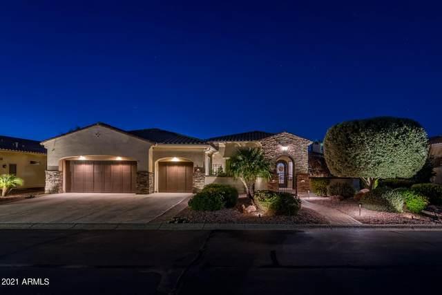 23032 N De La Guerra Court, Sun City West, AZ 85375 (MLS #6309646) :: Elite Home Advisors