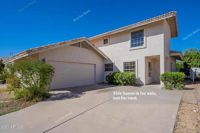 1310 W Folley Street, Chandler, AZ 85224 (MLS #6309657) :: Conway Real Estate