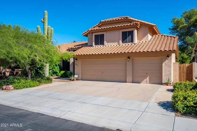 511 N Cholla Street, Chandler, AZ 85224 (MLS #6309662) :: Conway Real Estate