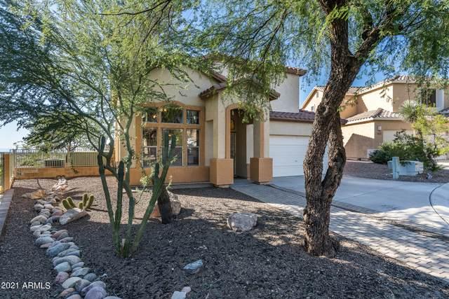 6230 S Mesa Vista Drive, Gold Canyon, AZ 85118 (MLS #6309663) :: D & R Realty LLC