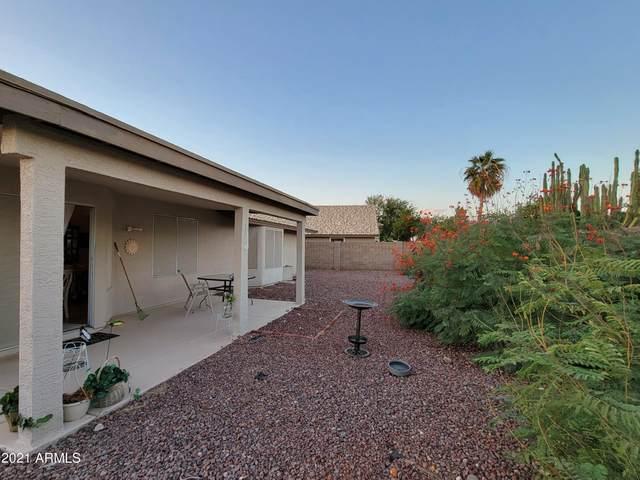 20298 N 108TH Lane, Sun City, AZ 85373 (MLS #6309680) :: The Garcia Group