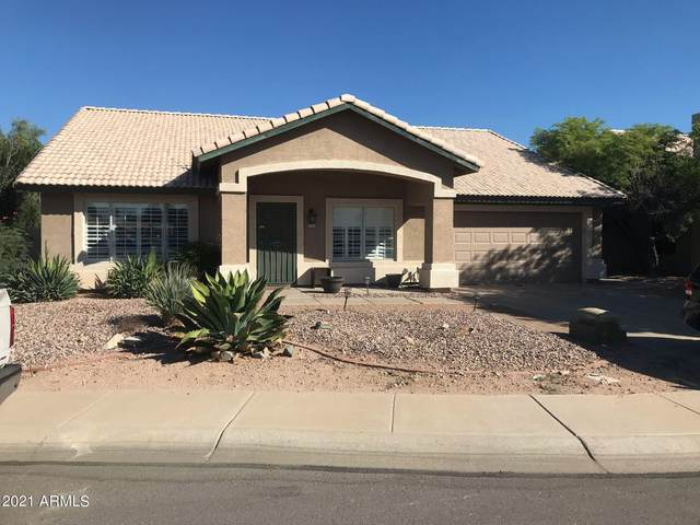 772 W Hopi Drive, Chandler, AZ 85225 (MLS #6309709) :: Conway Real Estate