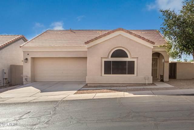 1166 N 87TH Place, Mesa, AZ 85207 (MLS #6309770) :: The Garcia Group