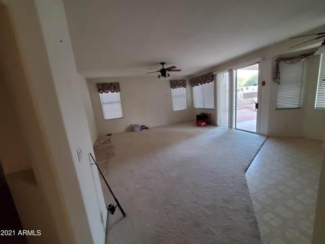 3309 N Garden Lane, Avondale, AZ 85392 (MLS #6309781) :: Elite Home Advisors