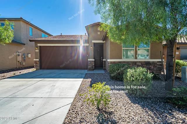 11927 W Honeysuckle Court, Peoria, AZ 85383 (MLS #6309787) :: Keller Williams Realty Phoenix