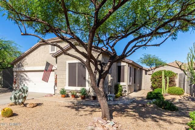 6576 E Casa De Leon Lane, Gold Canyon, AZ 85118 (MLS #6309790) :: West USA Realty