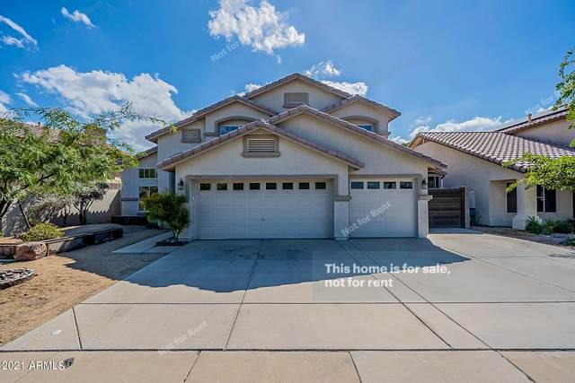 5351 W Kerry Lane, Glendale, AZ 85308 (MLS #6309804) :: Arizona Home Group
