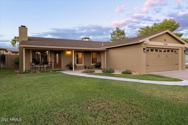 2750 E Dahlia Drive, Phoenix, AZ 85032 (MLS #6309811) :: Dave Fernandez Team   HomeSmart