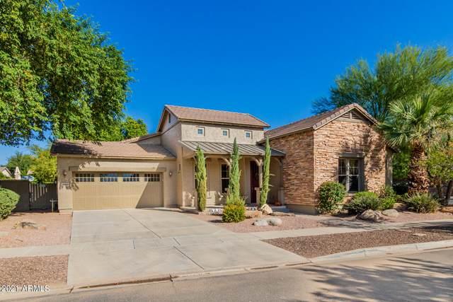 15406 W Surrey Drive, Surprise, AZ 85379 (MLS #6309825) :: West USA Realty