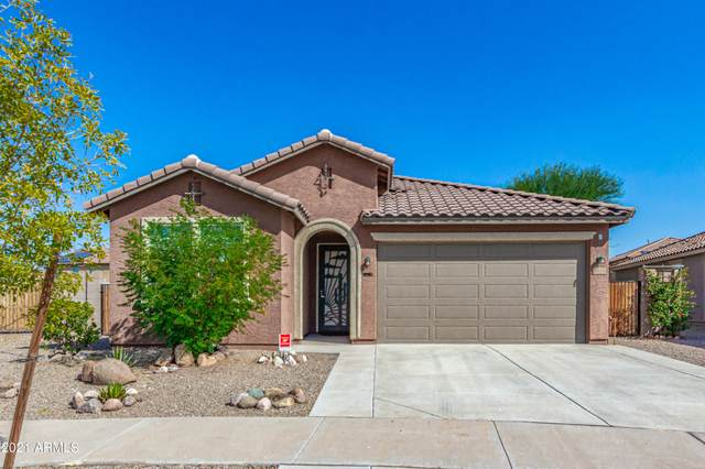 2407 S 172ND Avenue, Goodyear, AZ 85338 (MLS #6309828) :: Elite Home Advisors