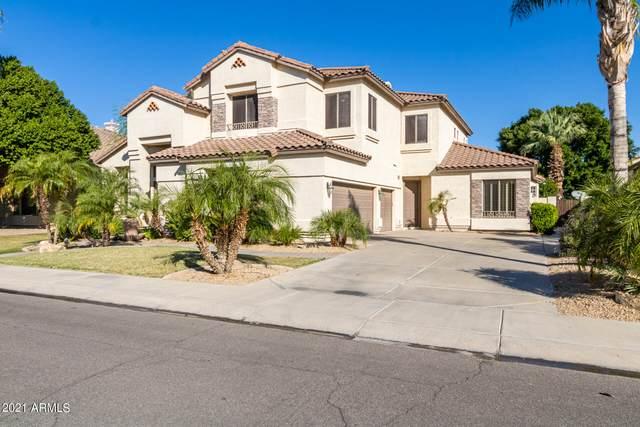 2312 W Enfield Way, Chandler, AZ 85286 (MLS #6309857) :: neXGen Real Estate