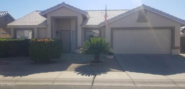 1261 S Wagonwheel Drive, Chandler, AZ 85286 (MLS #6309876) :: Yost Realty Group at RE/MAX Casa Grande