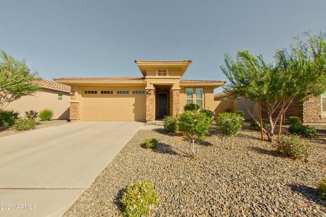 5205 N 187TH Lane, Litchfield Park, AZ 85340 (MLS #6309883) :: Hurtado Homes Group