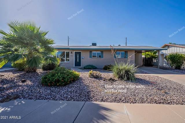 2204 N Normal Avenue, Tempe, AZ 85281 (MLS #6309931) :: Zolin Group