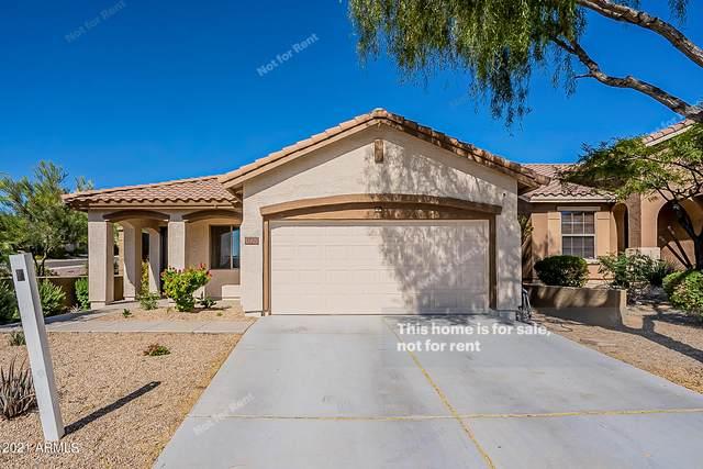 3770 W Blue Eagle Lane, Phoenix, AZ 85086 (MLS #6309979) :: The Garcia Group