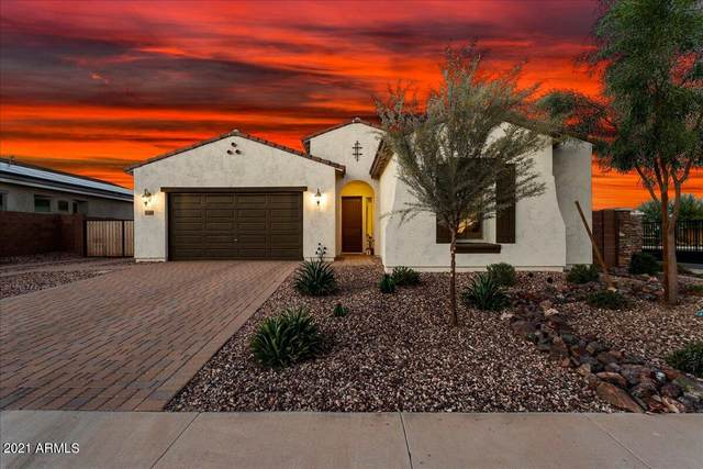 18360 W Wolf Street, Goodyear, AZ 85395 (MLS #6309982) :: Arizona Home Group