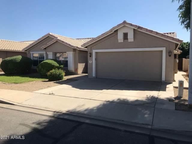 681 E Jasper Drive, Chandler, AZ 85225 (MLS #6309994) :: Conway Real Estate