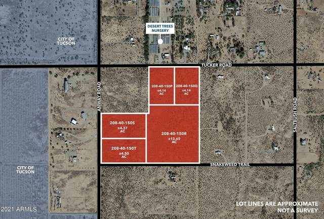 0 N Anyway 30Acres, Marana, AZ 85653 (MLS #6310002) :: Power Realty Group Model Home Center