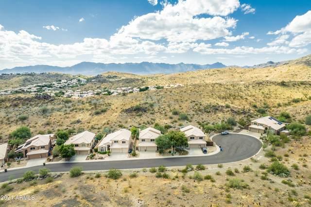 14426 S 11TH Place, Phoenix, AZ 85048 (MLS #6310017) :: The Daniel Montez Real Estate Group