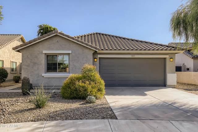 15525 W Hilton Avenue, Goodyear, AZ 85338 (MLS #6310024) :: Klaus Team Real Estate Solutions