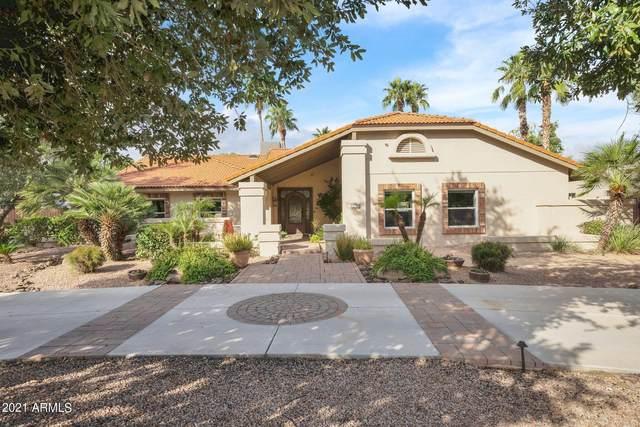 848 S Maple, Mesa, AZ 85206 (MLS #6310132) :: Conway Real Estate