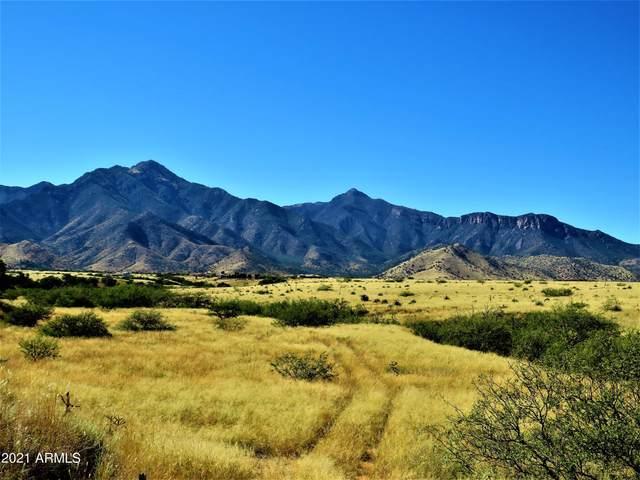 TBD Kokopelli Way 8.02 Acres, Hereford, AZ 85615 (MLS #6310143) :: Keller Williams Realty Phoenix