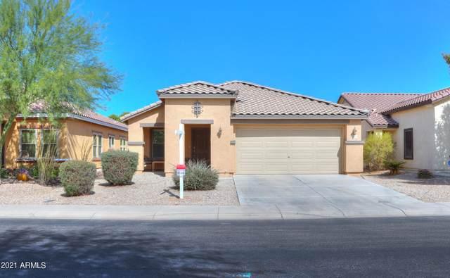 40090 W Mary Lou Drive, Maricopa, AZ 85138 (MLS #6310162) :: Dave Fernandez Team   HomeSmart