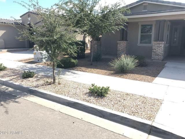 22457 E Sonoqui Boulevard, Queen Creek, AZ 85142 (MLS #6310182) :: Keller Williams Realty Phoenix