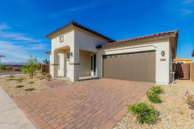 24282 N 173RD Drive, Surprise, AZ 85387 (MLS #6310190) :: Midland Real Estate Alliance