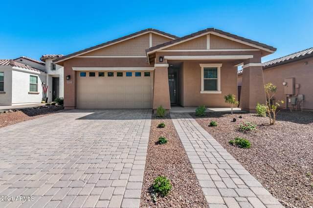 4177 N 198TH Avenue, Litchfield Park, AZ 85340 (MLS #6310198) :: Klaus Team Real Estate Solutions