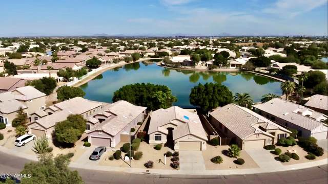 1913 N 110TH Avenue, Avondale, AZ 85392 (MLS #6310229) :: Keller Williams Realty Phoenix
