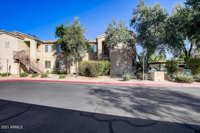29606 N Tatum Boulevard #167, Cave Creek, AZ 85331 (MLS #6310238) :: Keller Williams Realty Phoenix