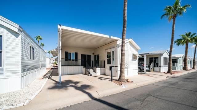625 Hawks Eye Drive, Apache Junction, AZ 85119 (MLS #6310242) :: The Ethridge Team
