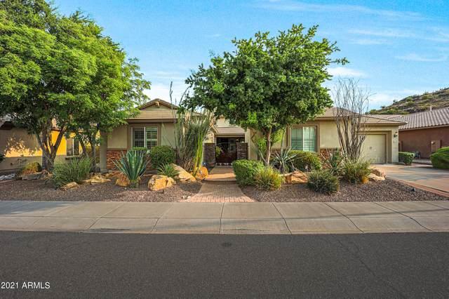 5833 W Desperado Way, Phoenix, AZ 85083 (MLS #6310247) :: Keller Williams Realty Phoenix