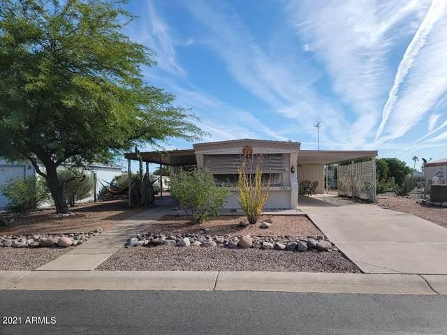 3709 N South Dakota Avenue, Florence, AZ 85132 (MLS #6310276) :: Keller Williams Realty Phoenix